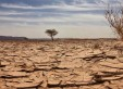 Sécheresse-réchauffement-climatique